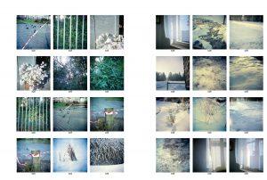 © Conny Höflich, blogbeitrag 180320, kontaktbögen begleitbilder